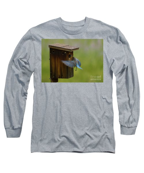 Feeding Time For Bluebirds Long Sleeve T-Shirt