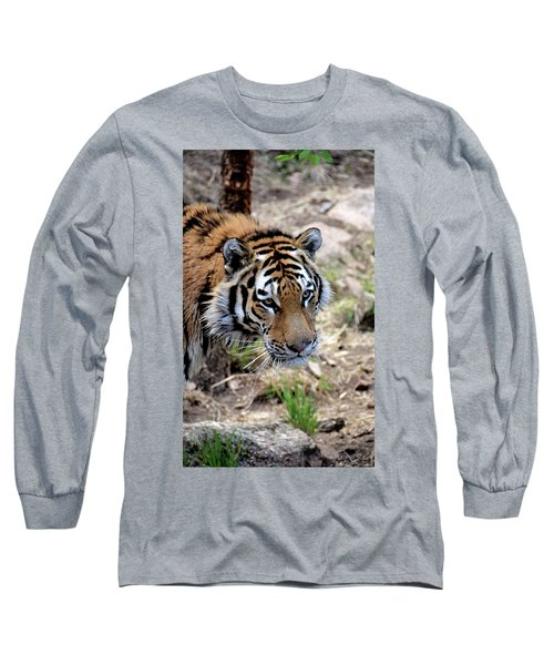 Feline Focus Long Sleeve T-Shirt