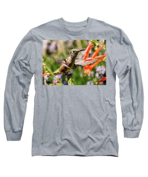 Female Broadtail Humingbird Long Sleeve T-Shirt