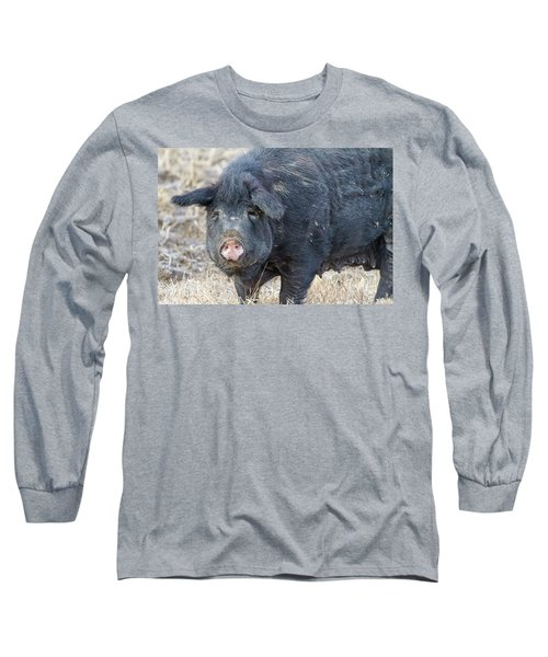 Long Sleeve T-Shirt featuring the photograph Female Hog by James BO Insogna