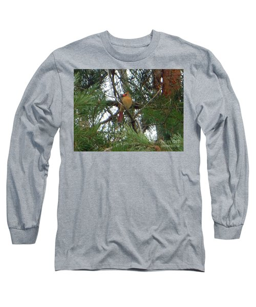 Long Sleeve T-Shirt featuring the photograph Female Northern Cardinal by Rockin Docks Deluxephotos