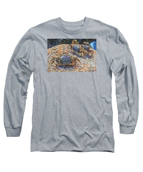 Long Sleeve T-Shirt featuring the photograph Fiddler Crabs by Constantine Gregory
