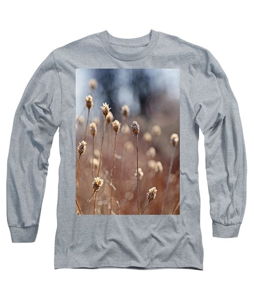 Field Of Dried Flowers In Earth Tones Long Sleeve T-Shirt
