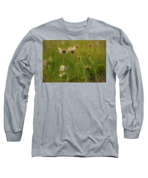Field Of Flowers 2 Long Sleeve T-Shirt