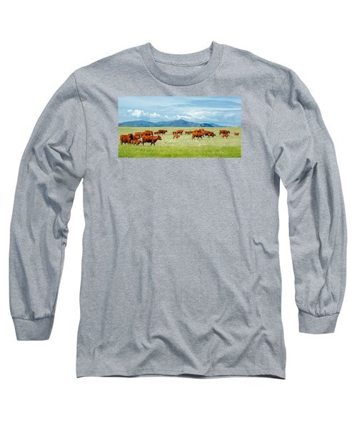 Field Of Reds Long Sleeve T-Shirt