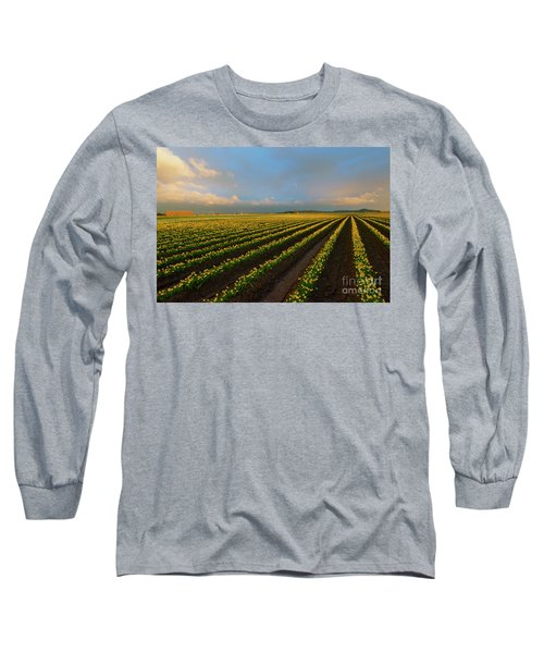 Long Sleeve T-Shirt featuring the photograph Fields Of Yellow by Mike Dawson