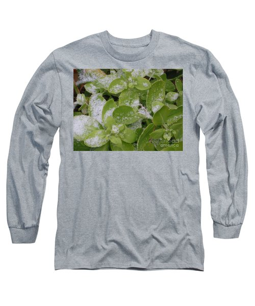 Long Sleeve T-Shirt featuring the photograph First Dusting Of Snow Plant by Rockin Docks Deluxephotos