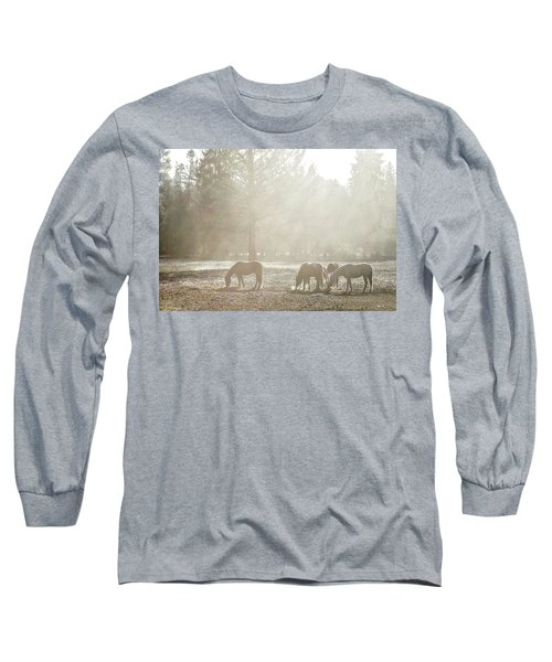 Five Horses In The Mist Long Sleeve T-Shirt