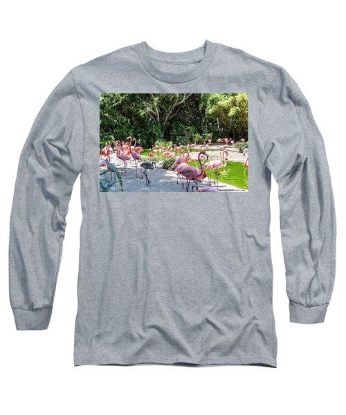 Flamingo Flock Long Sleeve T-Shirt by Daniel Hebard