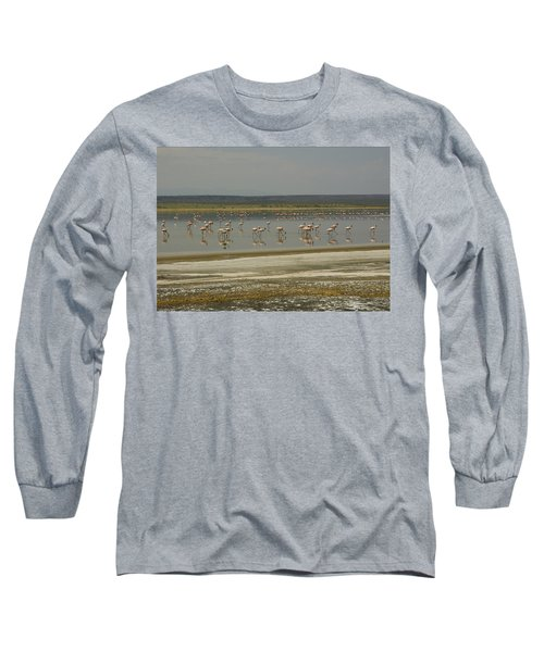 Flamingos Magadi Hot Springs Kenya Long Sleeve T-Shirt by Patrick Kain