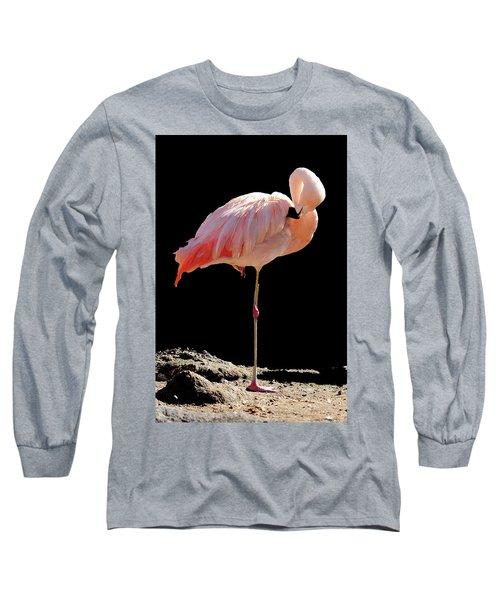 Flamingo Long Sleeve T-Shirt