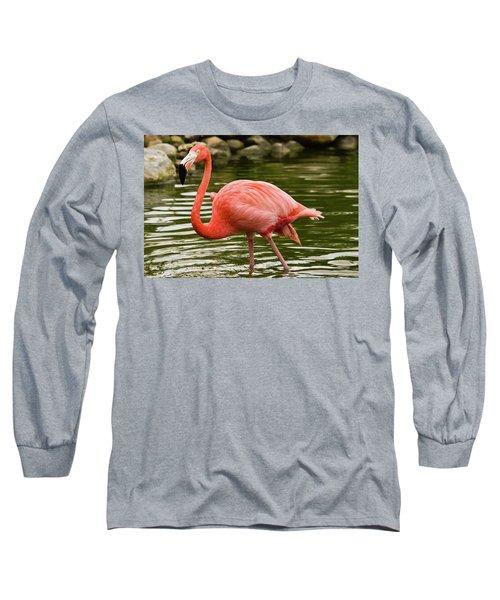 Flamingo Wades Long Sleeve T-Shirt