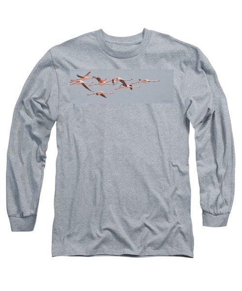 Flamingos In Flight Long Sleeve T-Shirt