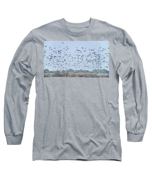 Flock Of Beautiful Migratory Lapwing Birds In Clear Winter Sky Long Sleeve T-Shirt by Matthew Gibson