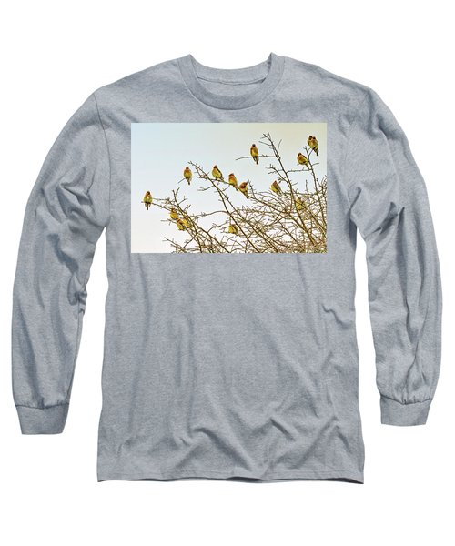 Flock Of Cedar Waxwings  Long Sleeve T-Shirt by Geraldine Scull