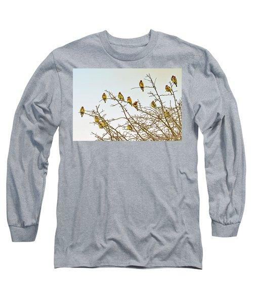 Flock Of Cedar Waxwings  Long Sleeve T-Shirt