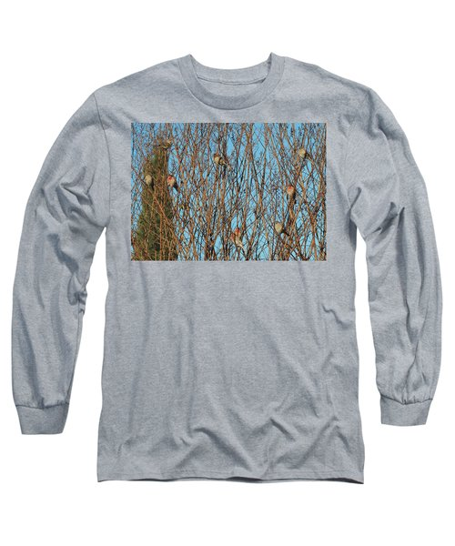 Flock Of Finches Long Sleeve T-Shirt