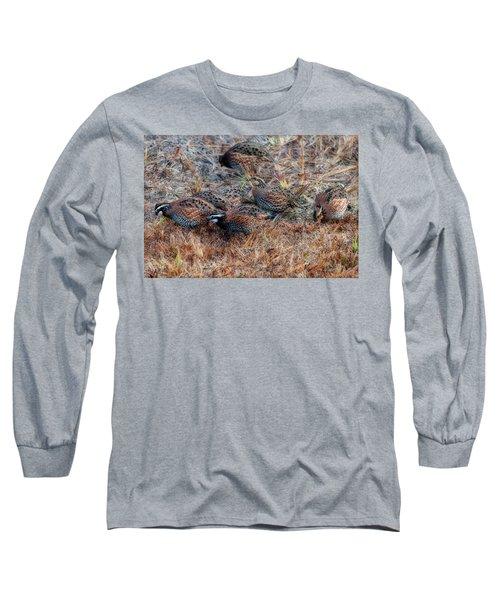 Flock Of Quail Feeding In Field Long Sleeve T-Shirt