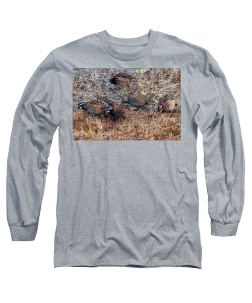 Flock Of Quail Feeding In Field Long Sleeve T-Shirt