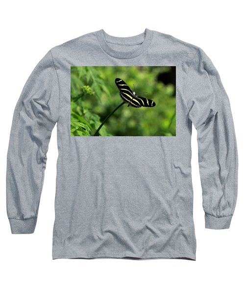 Florida State Butterfly Long Sleeve T-Shirt