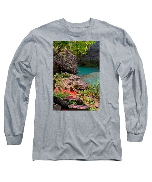 Flowers On Stone Long Sleeve T-Shirt