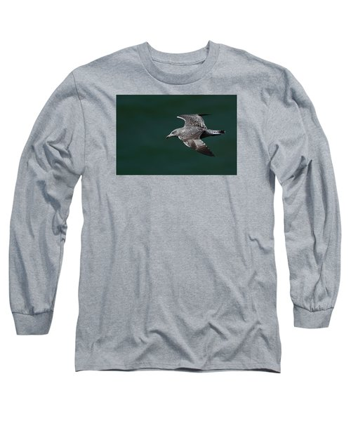 Long Sleeve T-Shirt featuring the photograph Flyby by Richard Patmore