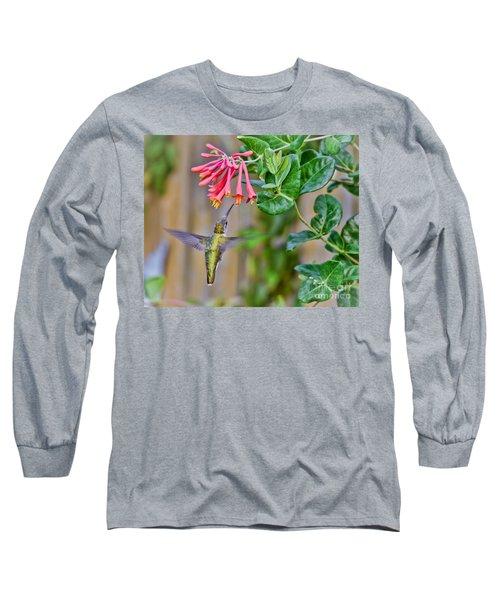 Flying Jewel Long Sleeve T-Shirt by Kerri Farley