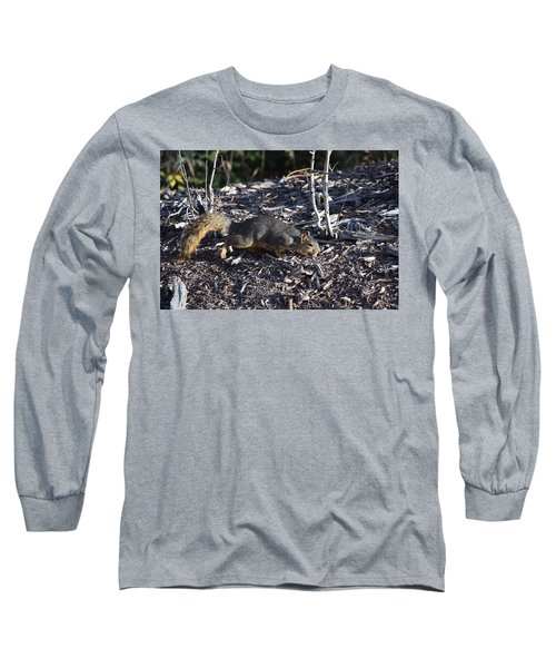 Squirrel Pprh Woodland Park Co Long Sleeve T-Shirt