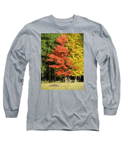 Forest Door Long Sleeve T-Shirt