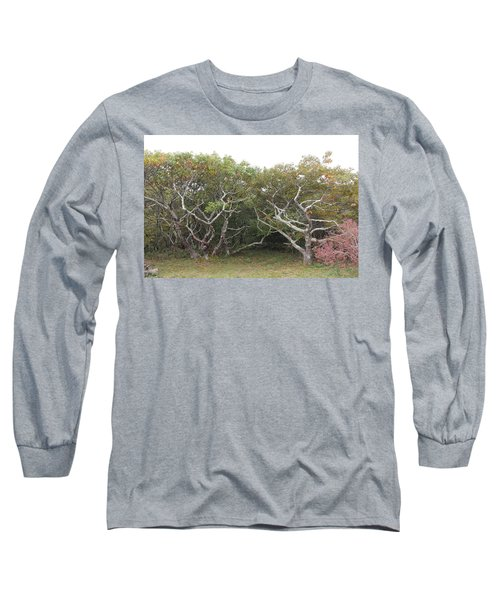 Forest Entry Long Sleeve T-Shirt