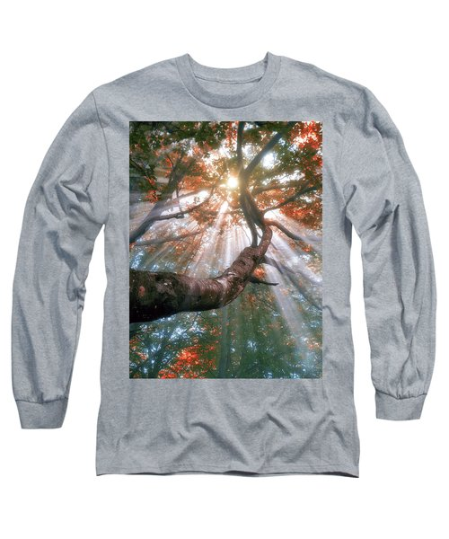Forest With Fog And Sun Rays Long Sleeve T-Shirt