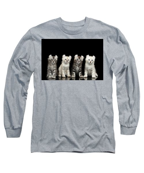 Four American Curl Kittens With Twisted Ears Isolated Black Background Long Sleeve T-Shirt by Sergey Taran