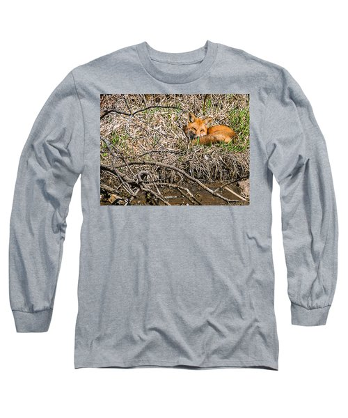Fox Napping Long Sleeve T-Shirt by Edward Peterson