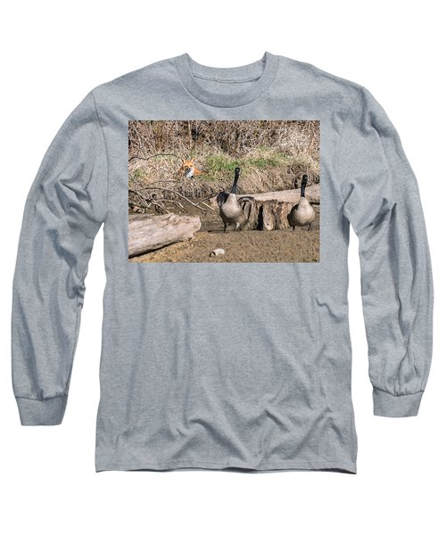 Fox Watch Long Sleeve T-Shirt by Edward Peterson