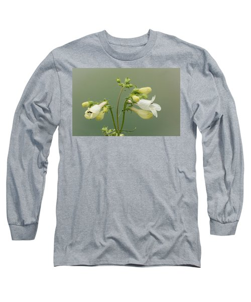Foxglove Beardtongue Long Sleeve T-Shirt