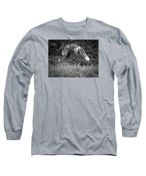 Foxy Gaze Long Sleeve T-Shirt