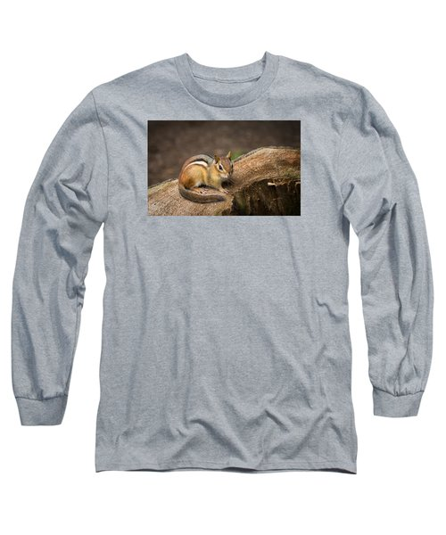 Long Sleeve T-Shirt featuring the photograph Friendly Chipmunk by Paul Miller