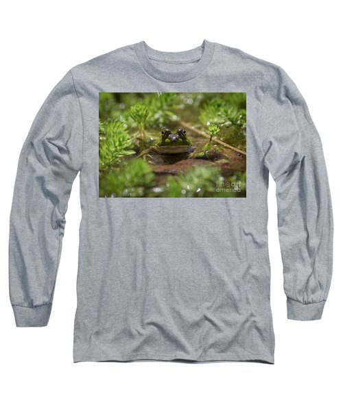 Froggy Long Sleeve T-Shirt by Douglas Stucky