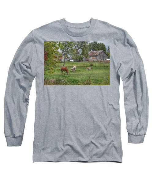 1008 - Front Yard Ponies Long Sleeve T-Shirt