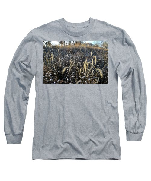 Frosted Foxtail Grasses In Glacial Park Long Sleeve T-Shirt