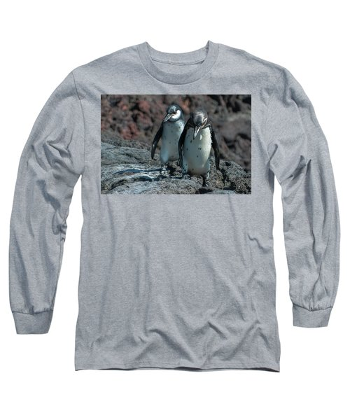 Galapagos Penguins  Bartelome Island Galapagos Islands Long Sleeve T-Shirt