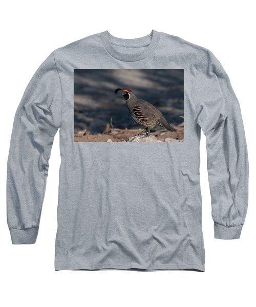 Gambel's Quail Long Sleeve T-Shirt by Martina Thompson