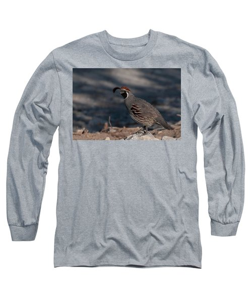 Gambel's Quail Long Sleeve T-Shirt