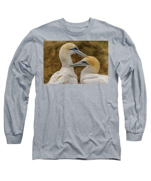 Gannets 4 Long Sleeve T-Shirt by Werner Padarin