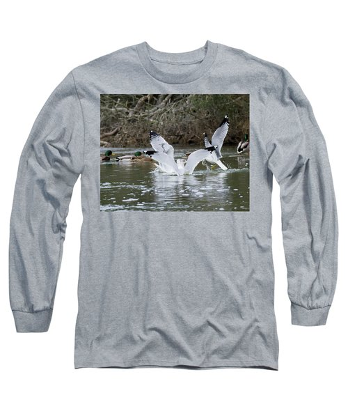 Long Sleeve T-Shirt featuring the photograph Gathering Of Egrets by George Randy Bass