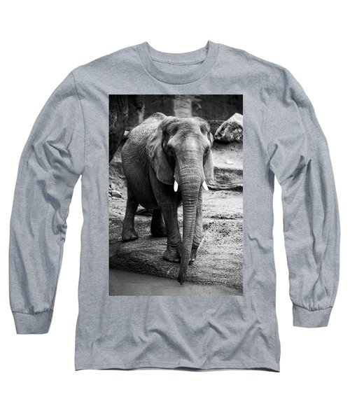 Long Sleeve T-Shirt featuring the photograph Gentle One by Karol Livote