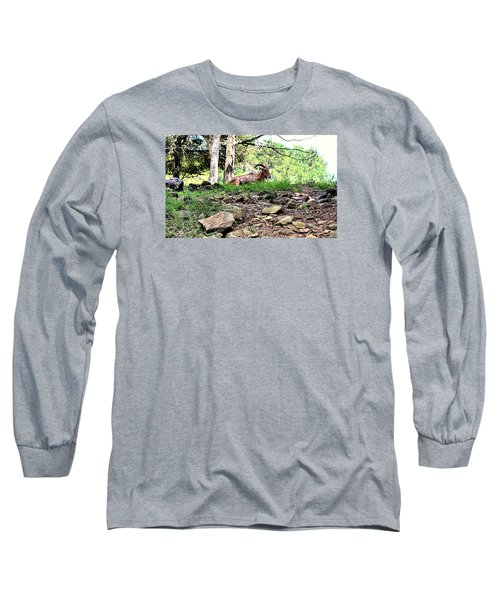 Georgia Mountain Goat At Rest Long Sleeve T-Shirt by James Potts
