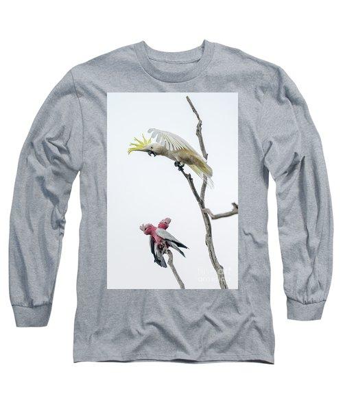 Get Off My Perch Long Sleeve T-Shirt