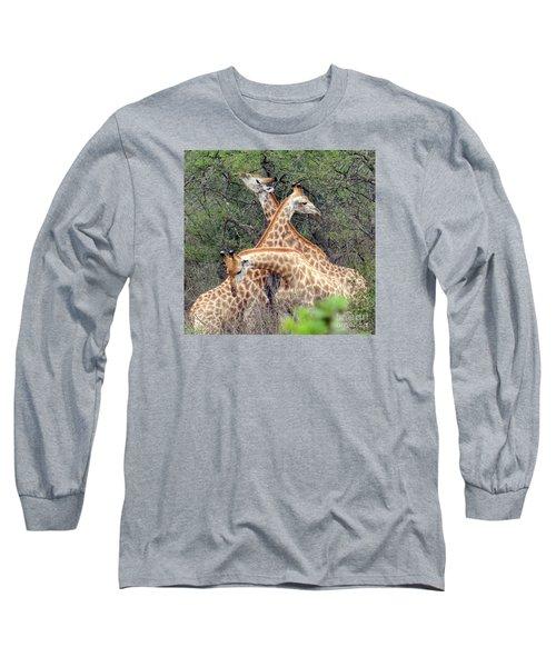 Giraffe Flirting Long Sleeve T-Shirt by John Potts
