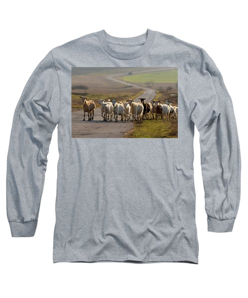 Goats Walking Home Long Sleeve T-Shirt